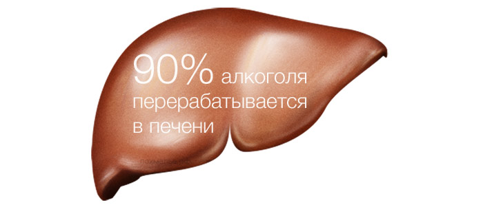 alkogol-i-pechen-1